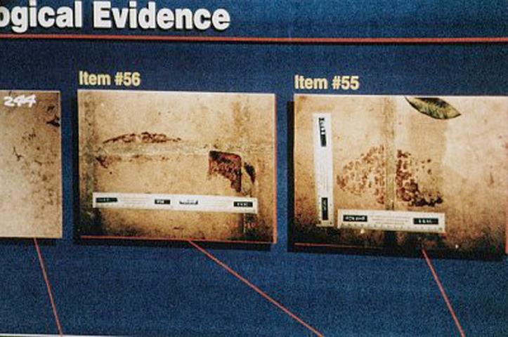 Oj Simpson Dna Evidence Real vs Reel: Ho...