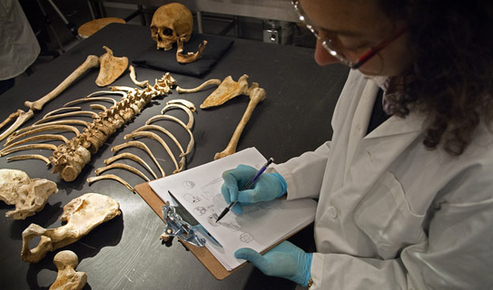 Forensic-Anthropology-Research-Paper