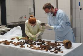 Incorporating Anthropology In Forensic Science Crime Scene To Court Room